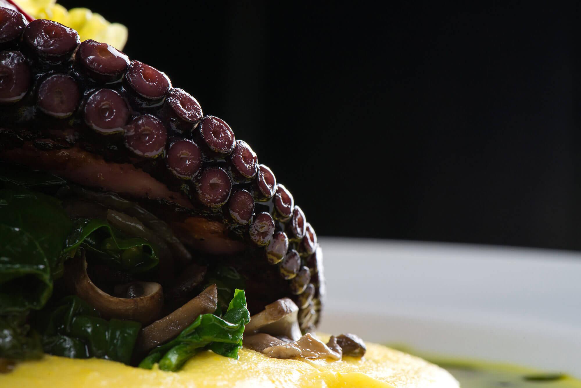 Осьминог с сальсой из грибов и шпината с полентой(1)
